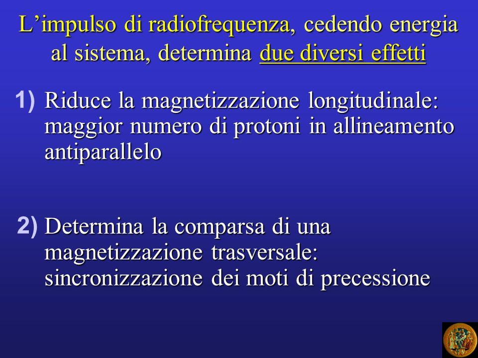 Limpulso di radiofrequenza, cedendo energia al sistema, determina due diversi effetti Riduce la magnetizzazione longitudinale: maggior numero di proto