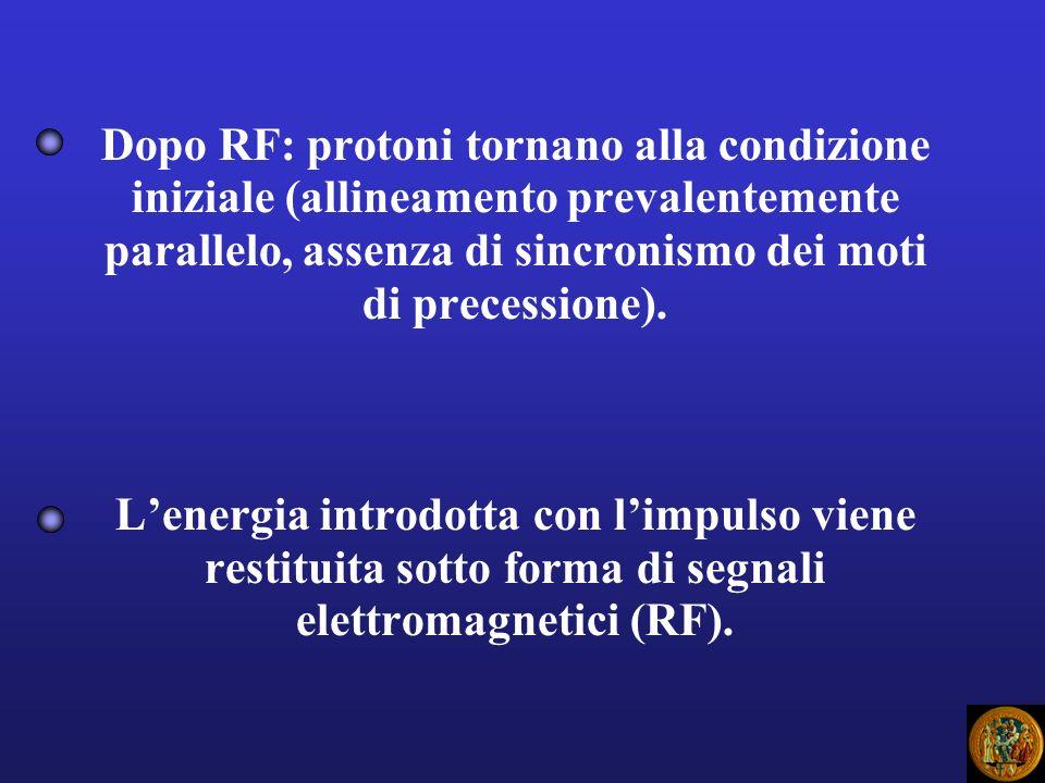 Dopo RF: protoni tornano alla condizione iniziale (allineamento prevalentemente parallelo, assenza di sincronismo dei moti di precessione). Lenergia i