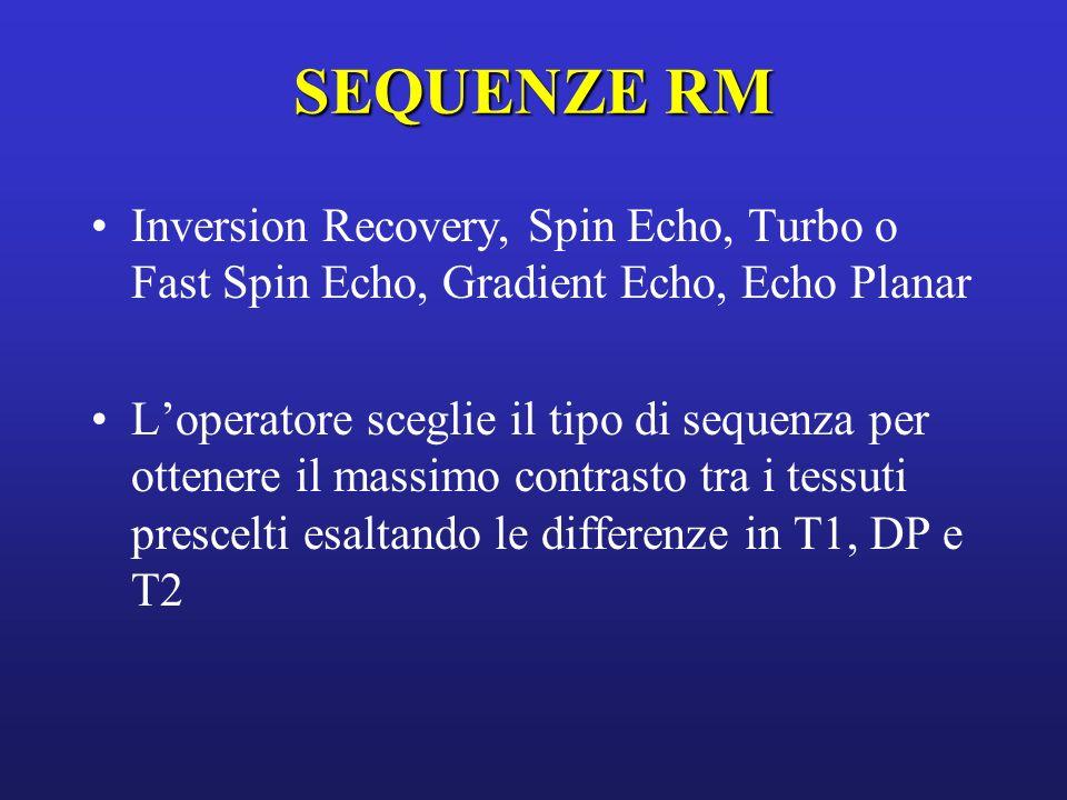 SEQUENZE RM Inversion Recovery, Spin Echo, Turbo o Fast Spin Echo, Gradient Echo, Echo Planar Loperatore sceglie il tipo di sequenza per ottenere il m