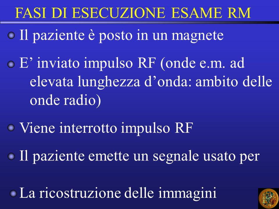 FASI DI ESECUZIONE ESAME RM Il paziente è posto in un magnete E inviato impulso RF (onde e.m. ad elevata lunghezza donda: ambito delle onde radio) Vie