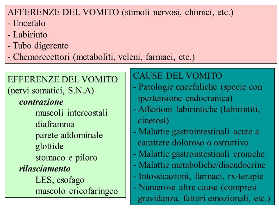 EFFERENZE DEL VOMITO (nervi somatici, S.N.A) contrazione muscoli intercostali diaframma parete addominale glottide stomaco e piloro rilasciamento LES,