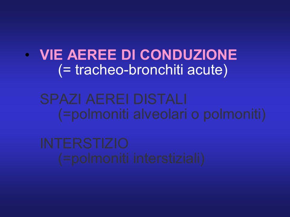 VIE AEREE DI CONDUZIONE (= tracheo-bronchiti acute) SPAZI AEREI DISTALI (=polmoniti alveolari o polmoniti) INTERSTIZIO (=polmoniti interstiziali)