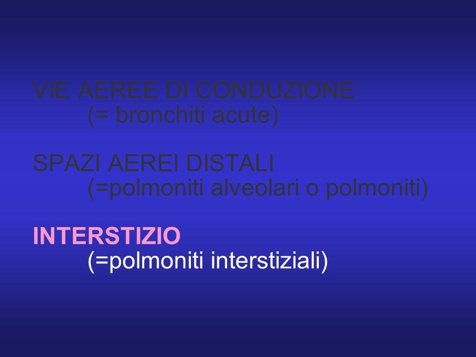 VIE AEREE DI CONDUZIONE (= bronchiti acute) SPAZI AEREI DISTALI (=polmoniti alveolari o polmoniti) INTERSTIZIO (=polmoniti interstiziali)