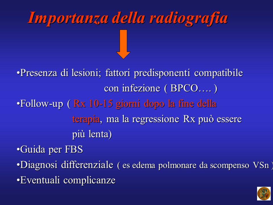 Importanza della radiografia Presenza di lesioni; fattori predisponenti compatibilePresenza di lesioni; fattori predisponenti compatibile con infezion