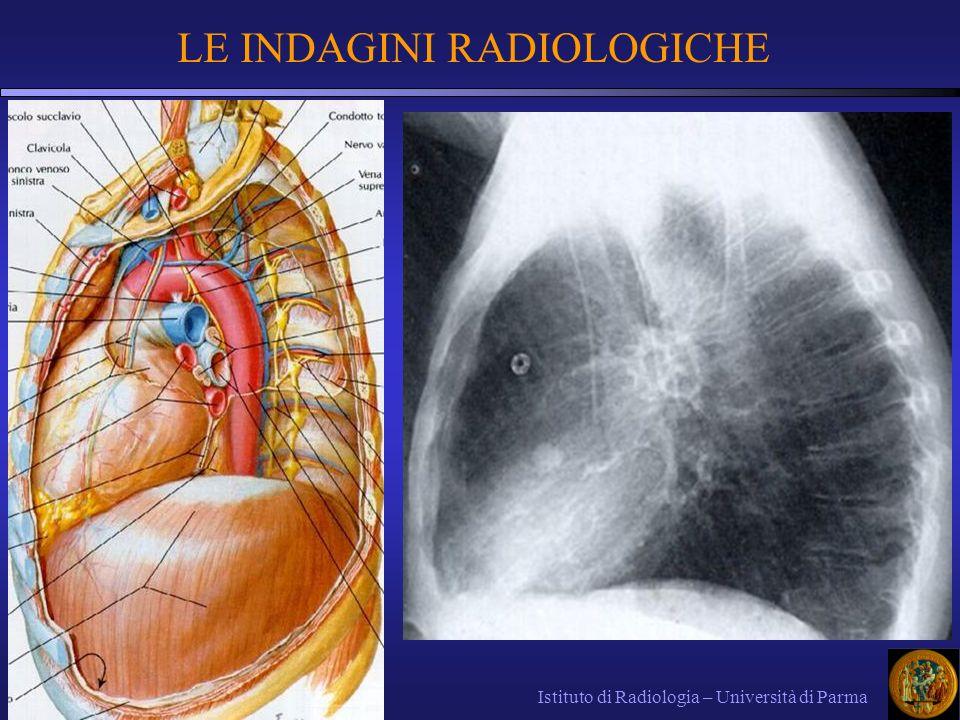 LE INDAGINI RADIOLOGICHE Istituto di Radiologia – Università di Parma