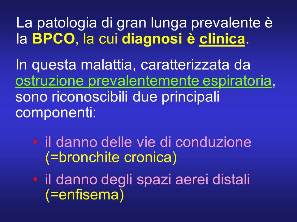 La patologia di gran lunga prevalente è la BPCO, la cui diagnosi è clinica. il danno delle vie di conduzione (=bronchite cronica) il danno degli spazi