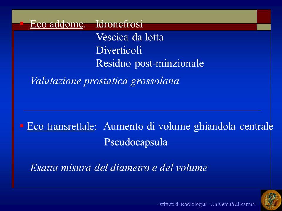Istituto di Radiologia – Università di Parma Eco addome: Idronefrosi Vescica da lotta Diverticoli Residuo post-minzionale Valutazione prostatica gross