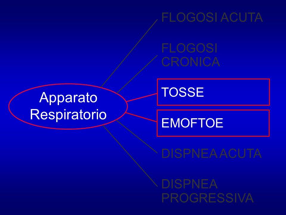 Apparato Respiratorio FLOGOSI ACUTA FLOGOSI CRONICA TOSSE EMOFTOE DISPNEA ACUTA DISPNEA PROGRESSIVA