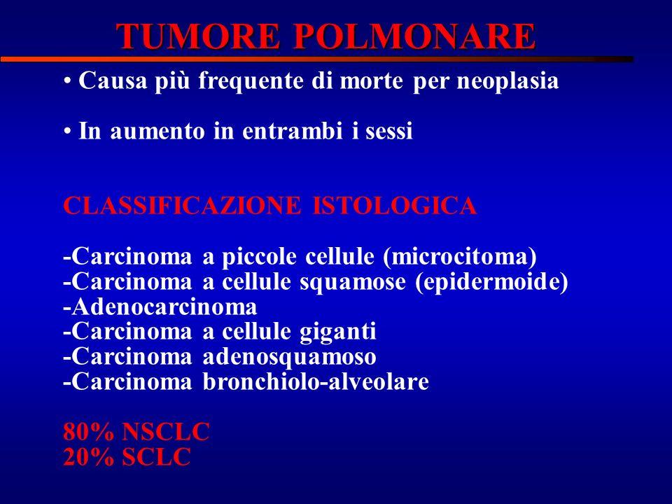 Causa più frequente di morte per neoplasia In aumento in entrambi i sessi CLASSIFICAZIONE ISTOLOGICA -Carcinoma a piccole cellule (microcitoma) -Carci