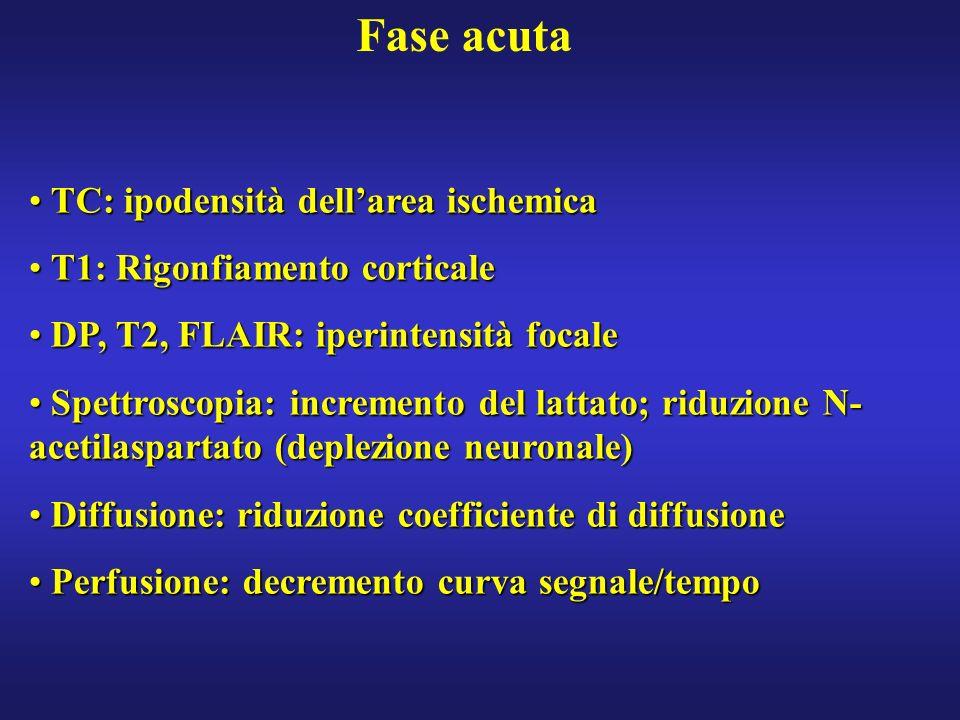 Fase acuta TC: ipodensità dellarea ischemica TC: ipodensità dellarea ischemica T1: Rigonfiamento corticale T1: Rigonfiamento corticale DP, T2, FLAIR: