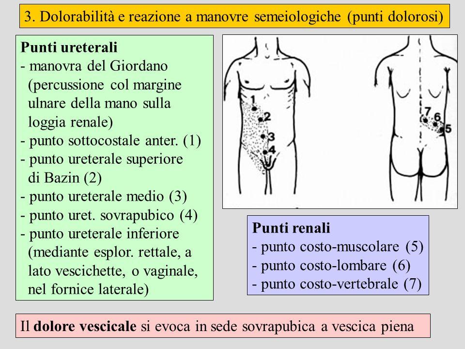 3. Dolorabilità e reazione a manovre semeiologiche (punti dolorosi) Punti ureterali - manovra del Giordano (percussione col margine ulnare della mano