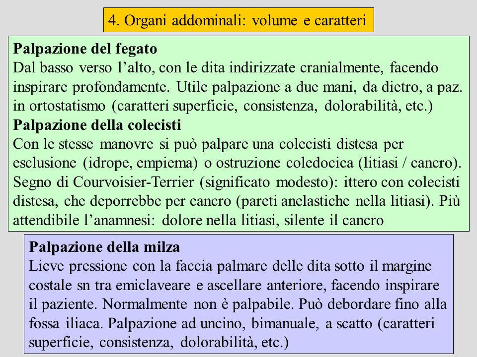 4. Organi addominali: volume e caratteri Palpazione della milza Lieve pressione con la faccia palmare delle dita sotto il margine costale sn tra emicl