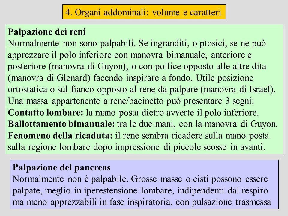 4. Organi addominali: volume e caratteri Palpazione del pancreas Normalmente non è palpabile. Grosse masse o cisti possono essere palpate, meglio in i