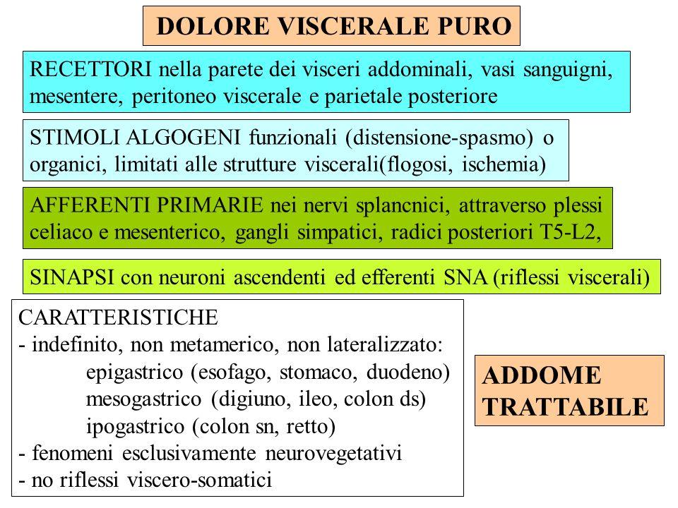 DOLORE VISCERALE PURO RECETTORI nella parete dei visceri addominali, vasi sanguigni, mesentere, peritoneo viscerale e parietale posteriore STIMOLI ALG