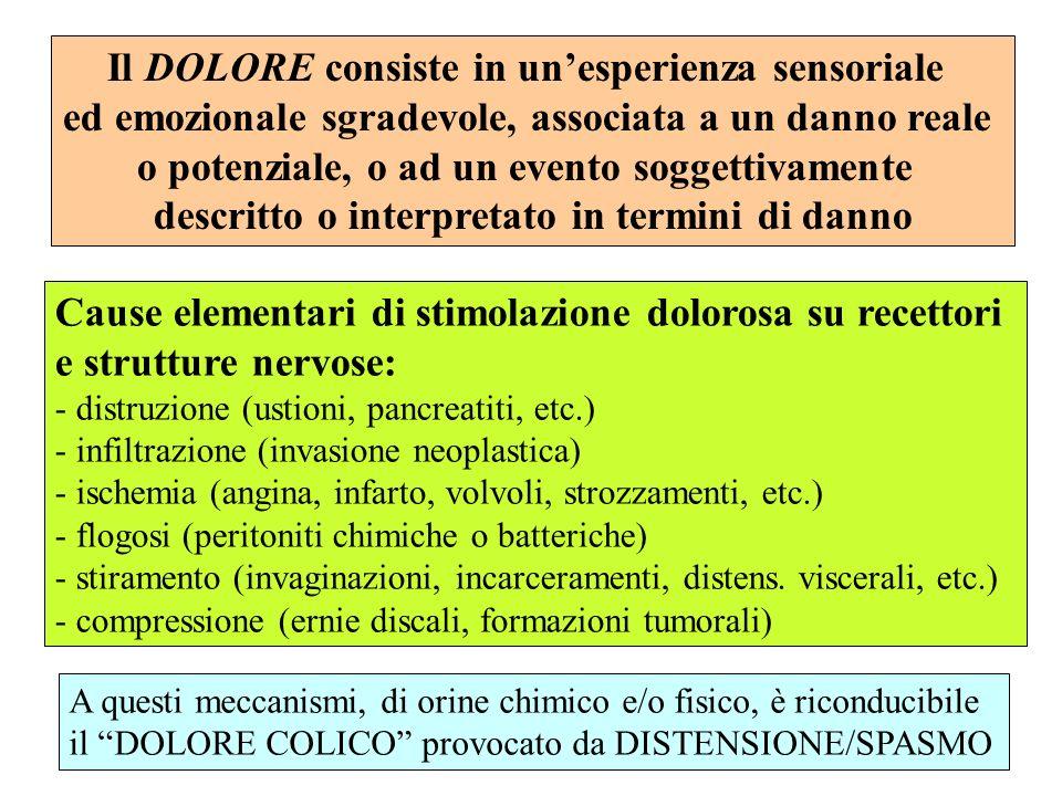 TIPI DI DOLORE DOLORE NOCICETTIVO: Lesioni organiche o fenomeni funzionali tali da determinare un danno tessutale (o come tale percepito) o, comunque, in grado di stimolare i recettori del dolore (NOCICETTORI) DOLORE NEUROPATICO: Affezioni/lesioni/compressioni di strutture nervose (radici, plessi o tronchi nervosi) o da processi somatosensitivi aberranti di varia origine.