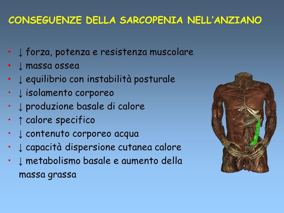CONSEGUENZE DELLA SARCOPENIA NELLANZIANO forza, potenza e resistenza muscolare massa ossea equilibrio con instabilità posturale isolamento corporeo pr