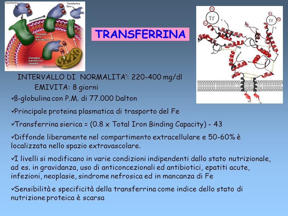 TRANSFERRINA INTERVALLO DI NORMALITA: 220-400 mg/dl EMIVITA: 8 giorni ß-globulina con P.M. di 77.000 Dalton Principale proteina plasmatica di trasport