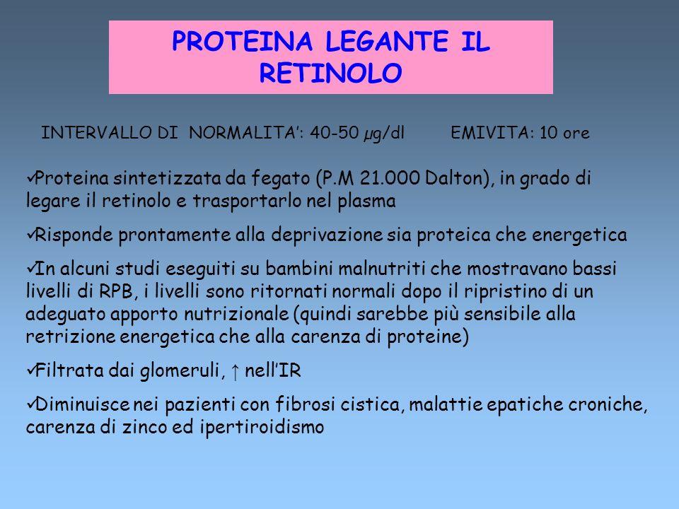 PROTEINA LEGANTE IL RETINOLO INTERVALLO DI NORMALITA: 40-50 µg/dl EMIVITA: 10 ore Proteina sintetizzata da fegato (P.M 21.000 Dalton), in grado di leg