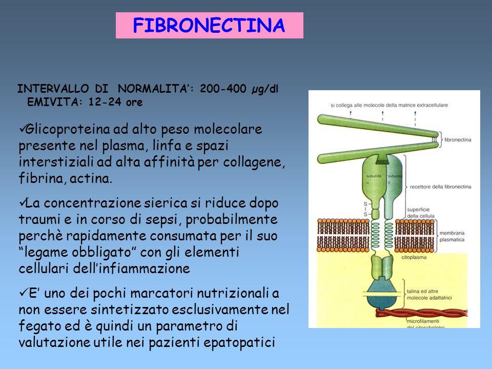FIBRONECTINA INTERVALLO DI NORMALITA: 200-400 µg/dl EMIVITA: 12-24 ore Glicoproteina ad alto peso molecolare presente nel plasma, linfa e spazi inters