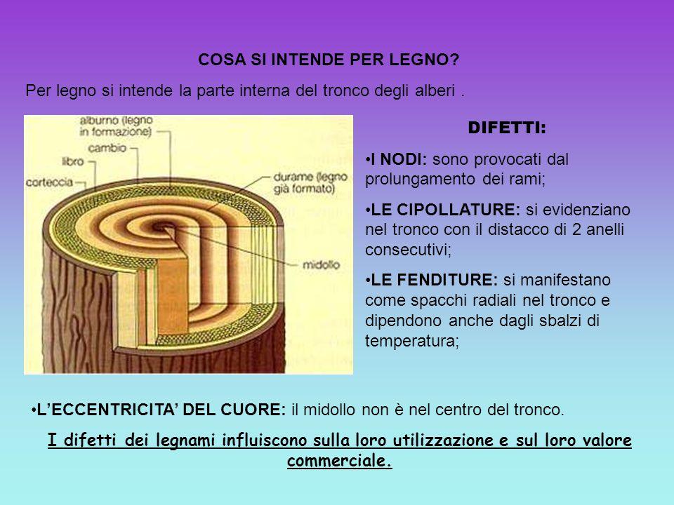 COSA SI INTENDE PER LEGNO? Per legno si intende la parte interna del tronco degli alberi. DIFETTI: I NODI: sono provocati dal prolungamento dei rami;