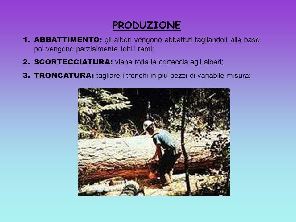 PRODUZIONE 1.ABBATTIMENTO: gli alberi vengono abbattuti tagliandoli alla base poi vengono parzialmente tolti i rami; 2.SCORTECCIATURA: viene tolta la