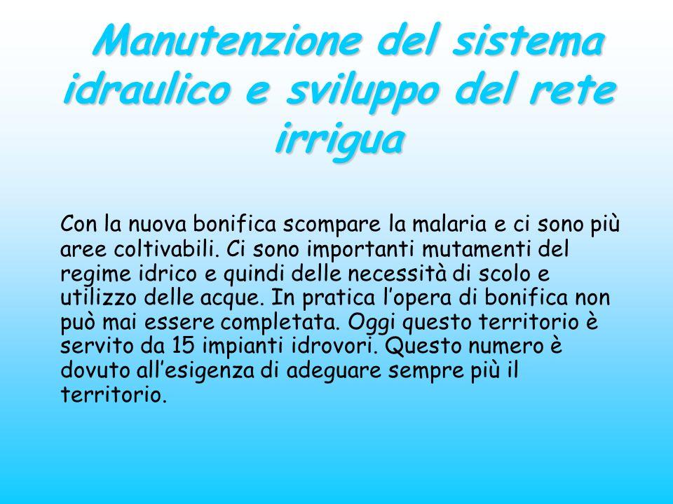 Manutenzione del sistema idraulico e sviluppo del rete irrigua Manutenzione del sistema idraulico e sviluppo del rete irrigua Con la nuova bonifica sc