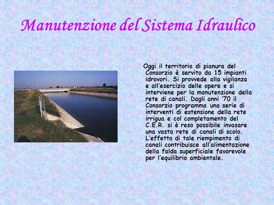 Manutenzione del Sistema Idraulico Oggi il territorio di pianura del Consorzio è servito da 15 impianti idrovori.