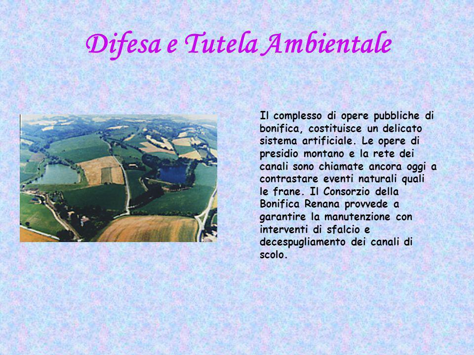Difesa e Tutela Ambientale Il complesso di opere pubbliche di bonifica, costituisce un delicato sistema artificiale.