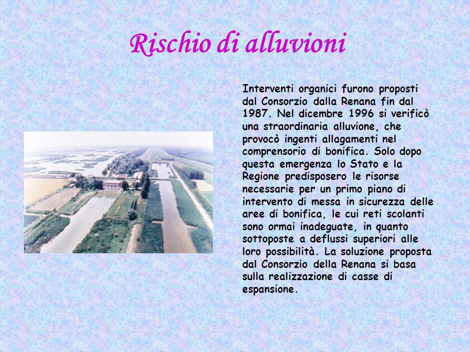 Rischio di alluvioni Interventi organici furono proposti dal Consorzio dalla Renana fin dal 1987.