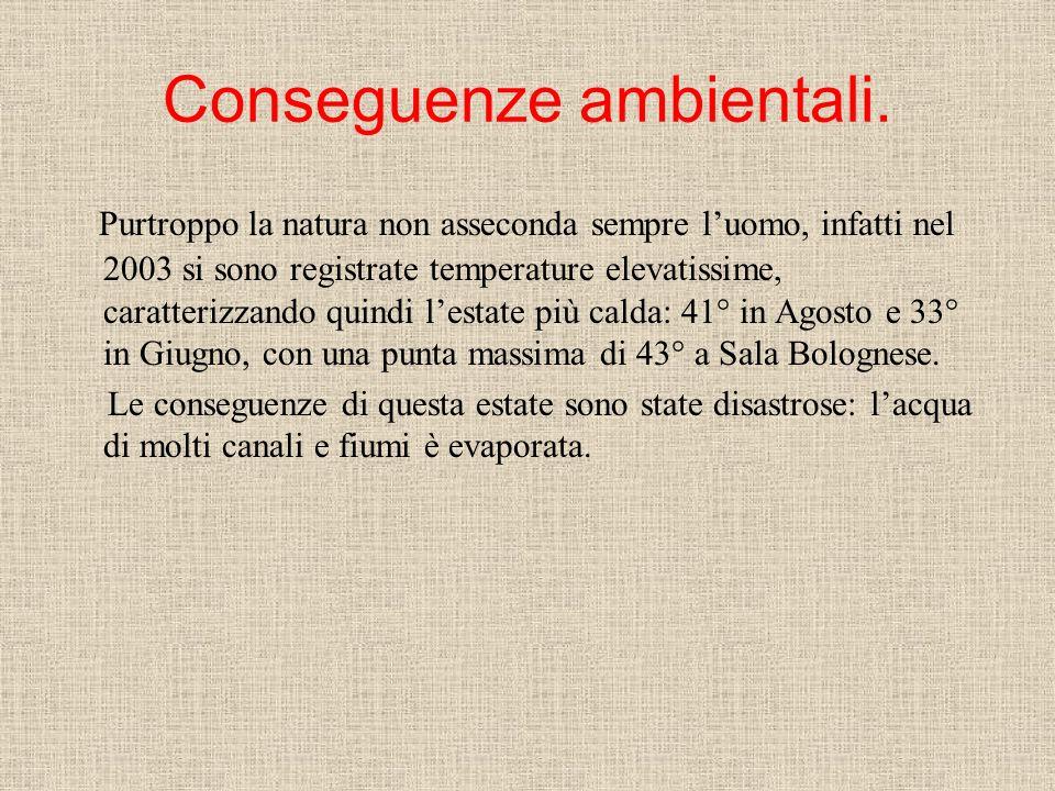 Conseguenze ambientali.