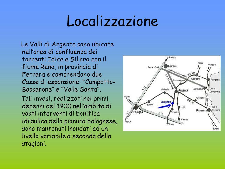 Localizzazione Le Valli di Argenta sono ubicate nellarea di confluenza dei torrenti Idice e Sillaro con il fiume Reno, in provincia di Ferrara e comprendono due Casse di espansione: Campotto- Bassarone e Valle Santa.
