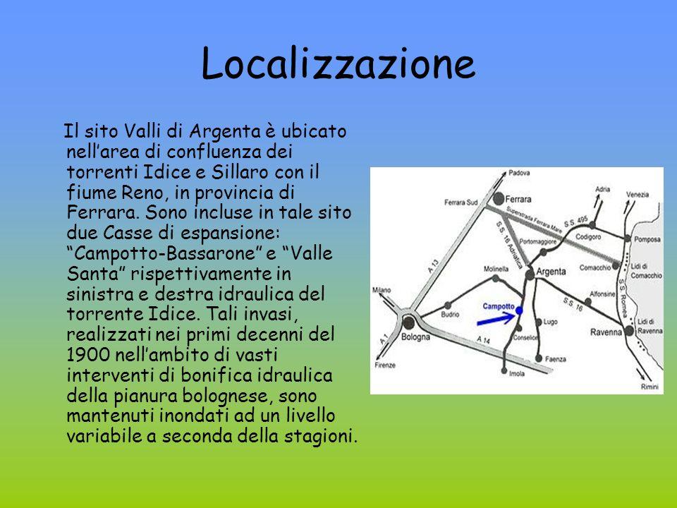 Localizzazione Il sito Valli di Argenta è ubicato nellarea di confluenza dei torrenti Idice e Sillaro con il fiume Reno, in provincia di Ferrara. Sono