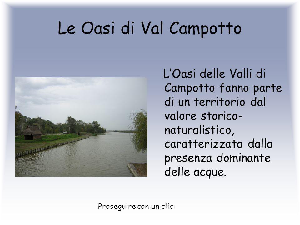 Le Oasi di Val Campotto LOasi delle Valli di Campotto fanno parte di un territorio dal valore storico- naturalistico, caratterizzata dalla presenza do