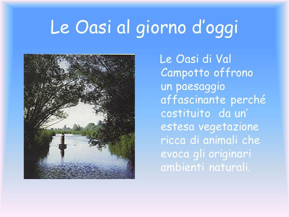Le Oasi al giorno doggi Le Oasi di Val Campotto offrono un paesaggio affascinante perché costituito da un estesa vegetazione ricca di animali che evoc