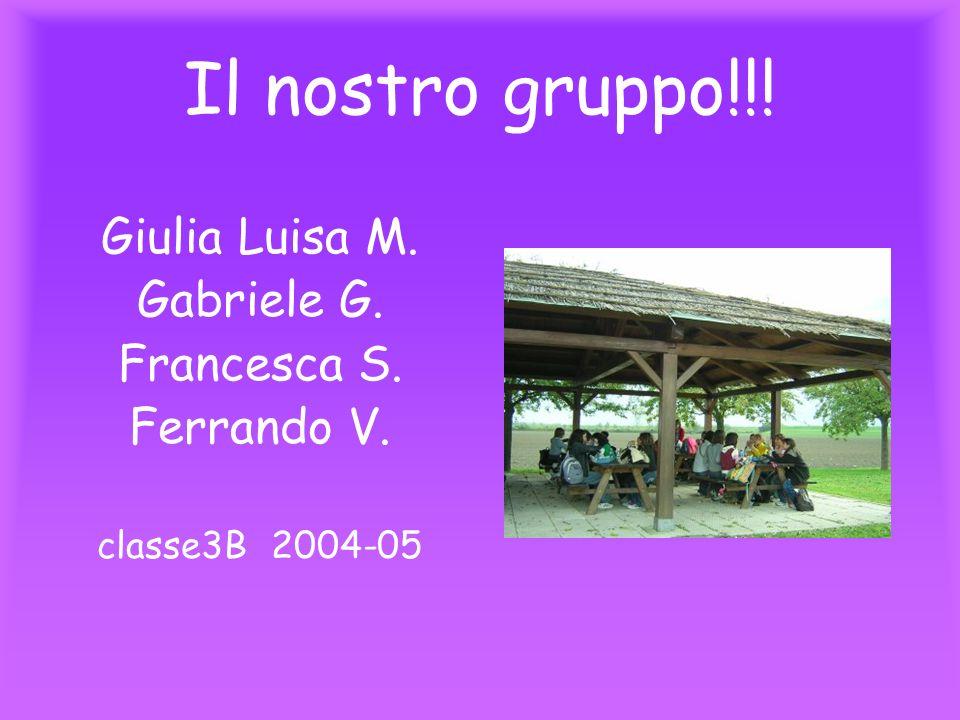 Il nostro gruppo!!! Giulia Luisa M. Gabriele G. Francesca S. Ferrando V. classe3B 2004-05