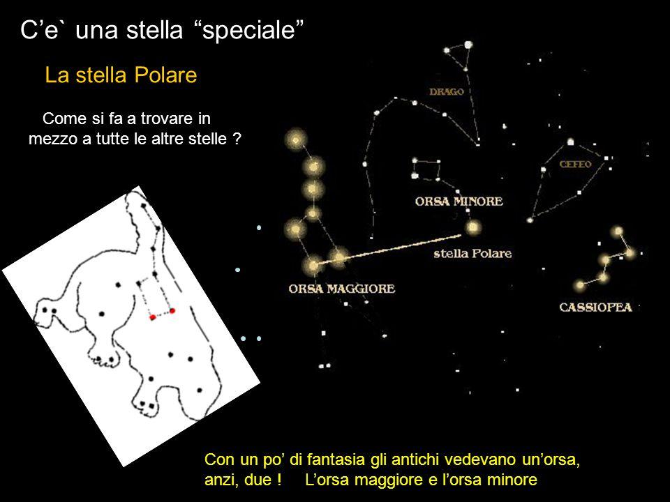Ce` una stella speciale Con un po di fantasia gli antichi vedevano unorsa, anzi, due ! Lorsa maggiore e lorsa minore La stella Polare Come si fa a tro