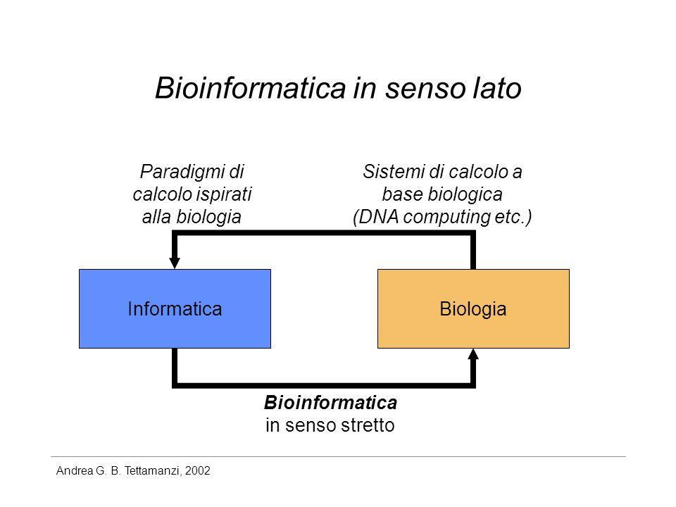 Andrea G. B. Tettamanzi, 2002 Bioinformatica in senso lato InformaticaBiologia Bioinformatica in senso stretto Sistemi di calcolo a base biologica (DN