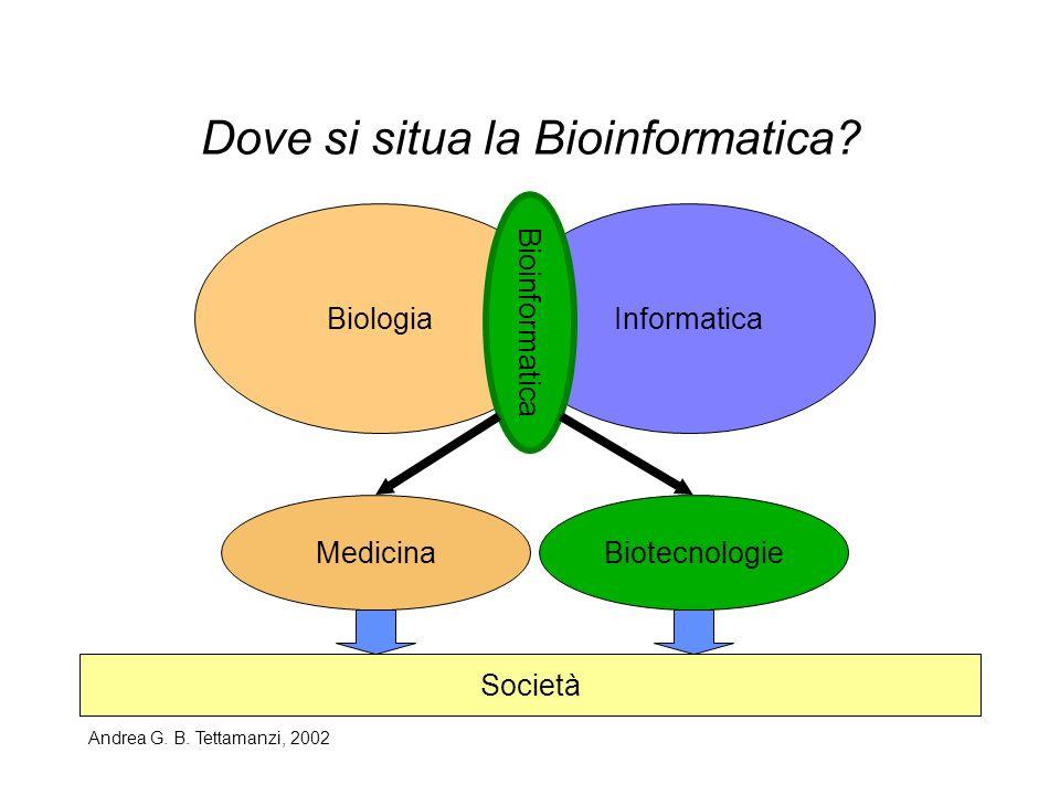 Andrea G. B. Tettamanzi, 2002 Dove si situa la Bioinformatica? BiologiaInformatica Bioinformatica MedicinaBiotecnologie Società