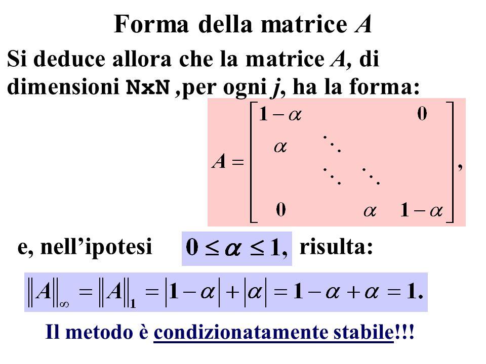 Forma della matrice A Si deduce allora che la matrice A, di dimensioni NxN,per ogni j, ha la forma: e, nellipotesi risulta: Il metodo è condizionatame