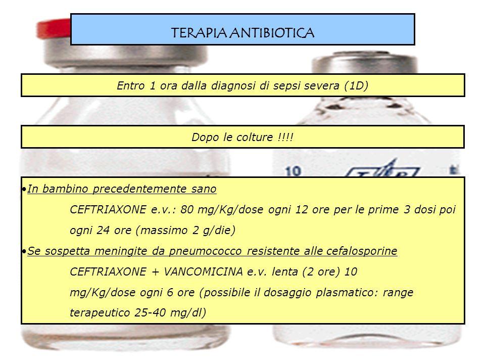 TERAPIA ANTIBIOTICA Entro 1 ora dalla diagnosi di sepsi severa (1D) In bambino precedentemente sano CEFTRIAXONE e.v.: 80 mg/Kg/dose ogni 12 ore per le