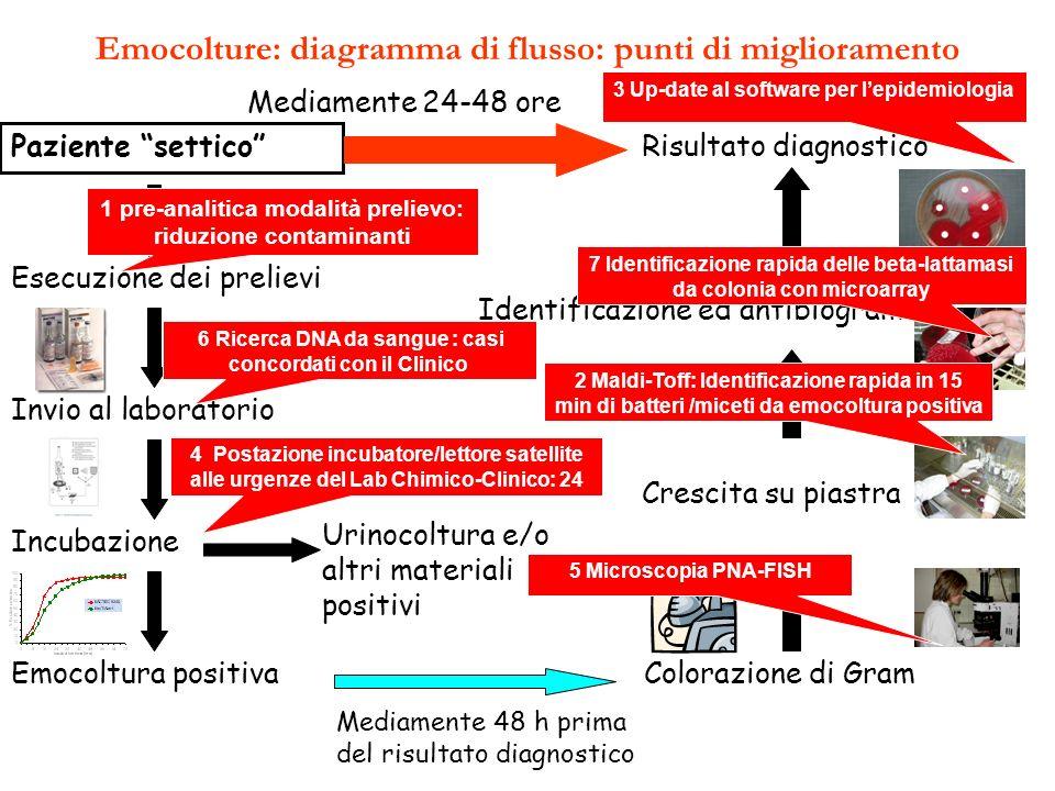 Emocolture: diagramma di flusso: punti di miglioramento Paziente settico Esecuzione dei prelievi Invio al laboratorio Incubazione Emocoltura positiva