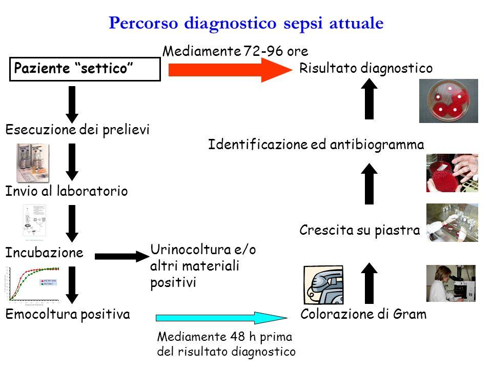 Percorso diagnostico sepsi attuale Paziente settico Esecuzione dei prelievi Invio al laboratorio Incubazione Emocoltura positiva Crescita su piastra I