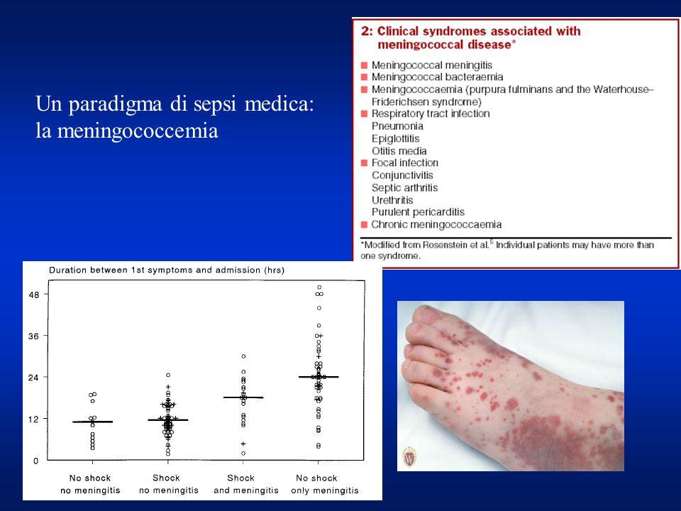 Un paradigma di sepsi medica: la meningococcemia