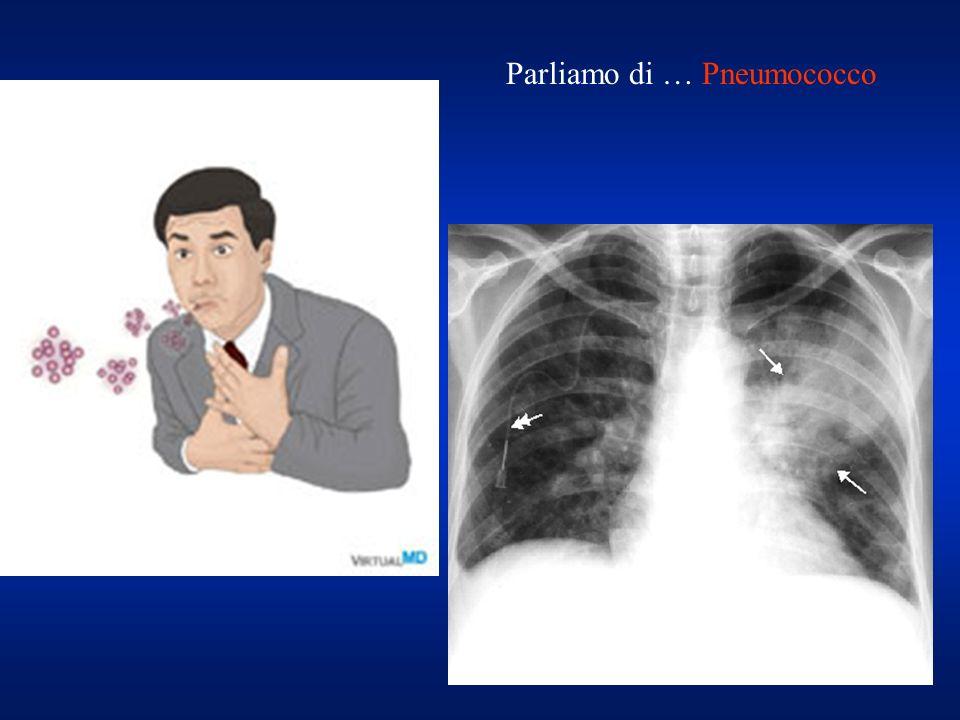 Parliamo di … Pneumococco
