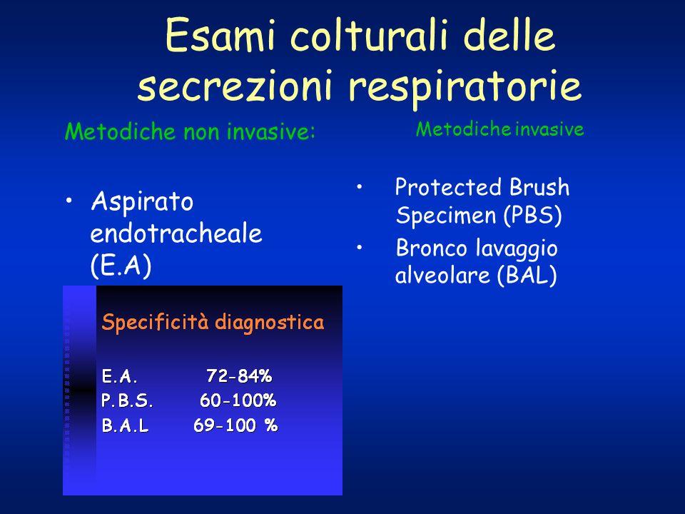 Esami colturali delle secrezioni respiratorie Metodiche non invasive: Aspirato endotracheale (E.A) Metodiche invasive Protected Brush Specimen (PBS) B
