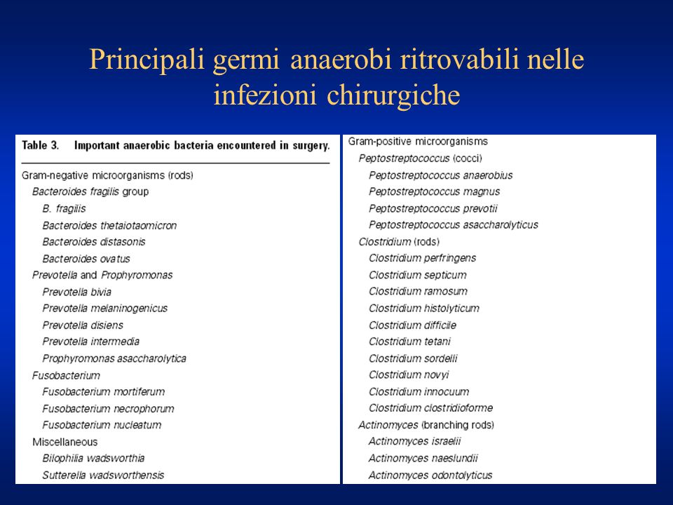 Principali germi anaerobi ritrovabili nelle infezioni chirurgiche