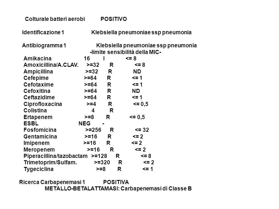Colturale batteri aerobi POSITIVO Identificazione 1 Klebsiella pneumoniae ssp pneumonia Antibiogramma 1 Klebsiella pneumoniae ssp pneumonia -limite se