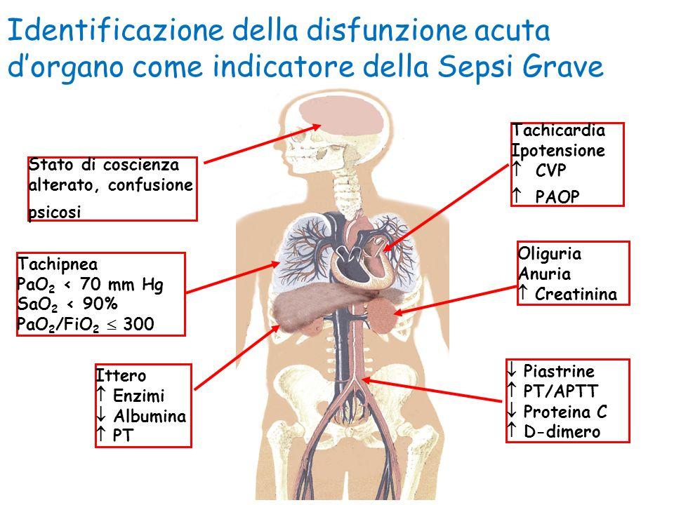 Identificazione della disfunzione acuta dorgano come indicatore della Sepsi Grave Tachicardia Ipotensione CVP PAOP Ittero Enzimi Albumina PT Stato di