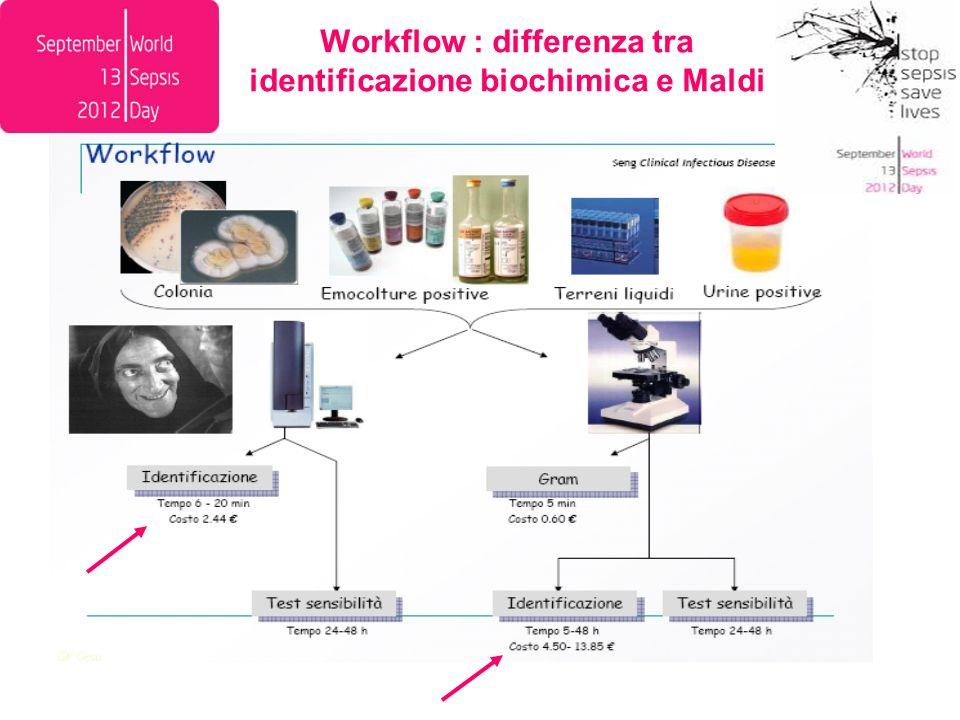 Workflow : differenza tra identificazione biochimica e Maldi