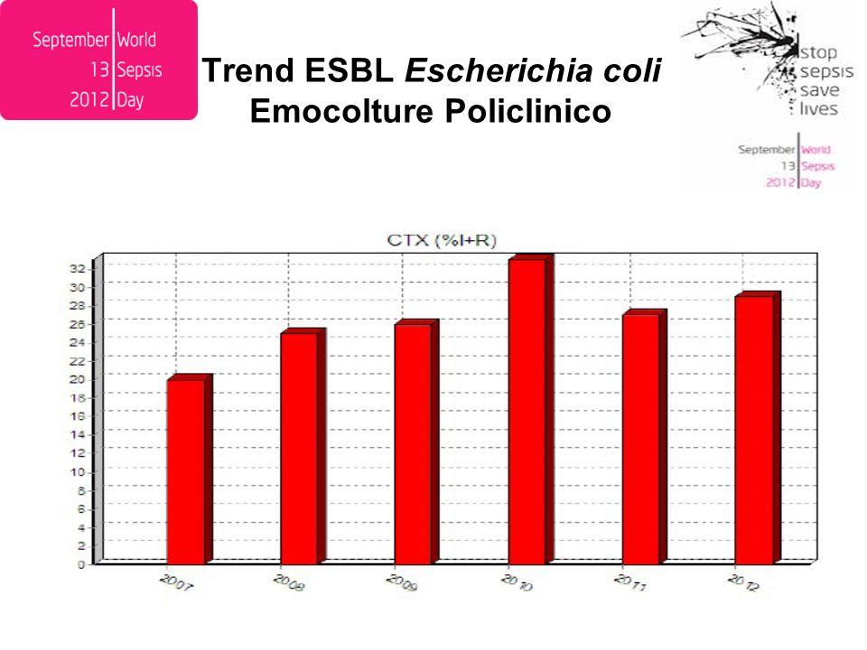 Trend R carbapenemi Pseudomonas aeruginosa Emocolture Policlinico